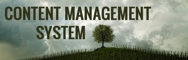 responsice content management system