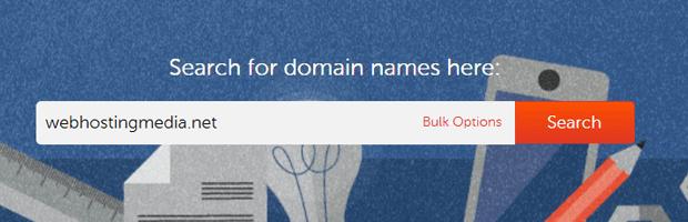 domain name registration guide