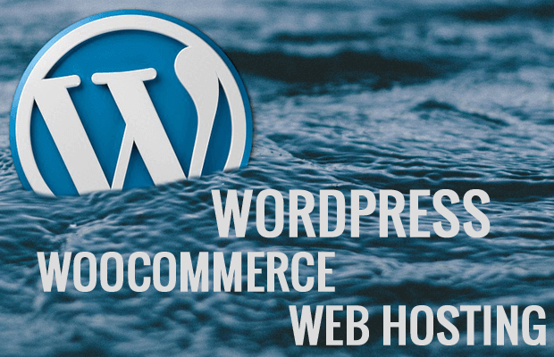web hosting for wordpress woocommerce