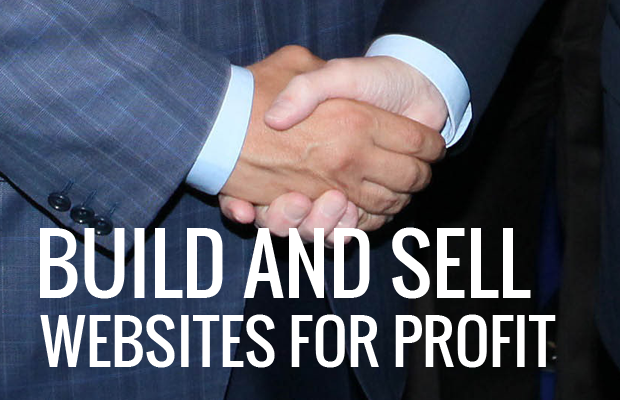 build and sell websites for profit