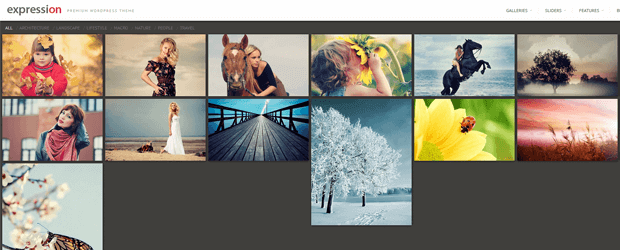 expression full width responsive wordpress theme photography
