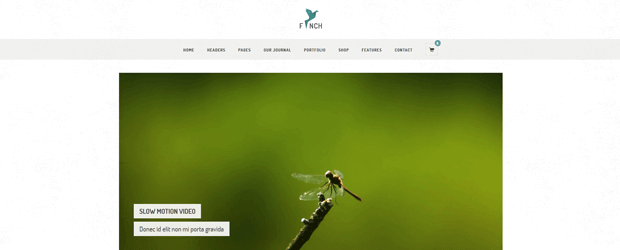 finch minimalist photo studio wordpress template