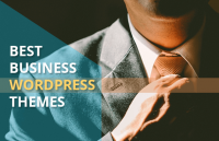 download the best business wordpress themes