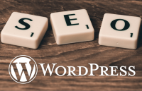 ultimate seo guide to wordpress blog