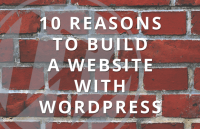 10 reasons to build wordpress website