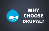 why choose drupal for your website