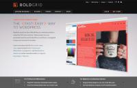 boldgrid review 2018
