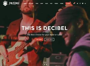 decibel professional music website
