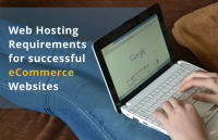 web hosting requirements for ecommerce websites