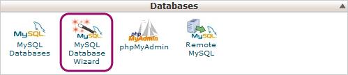 mysql database wizard wordpress website transfer