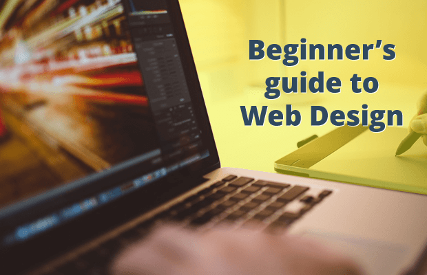 beginners guide to web design