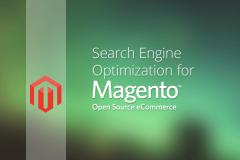 magento ecommerce search engine optimization