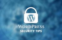 pro wordpress users security tips