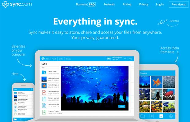 sync.com reviews