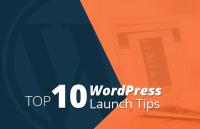 top wordpress website launch tips for best seo results
