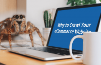 why to crawl your ecommerce website