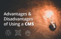 advantages disadvantages using cms for website building