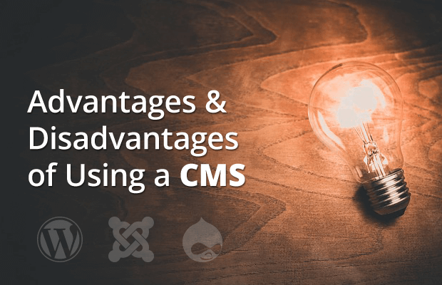 advantages disadvantages using cms for website building