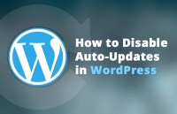 how disable wordpress auto updates