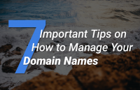 how to manage your domain names
