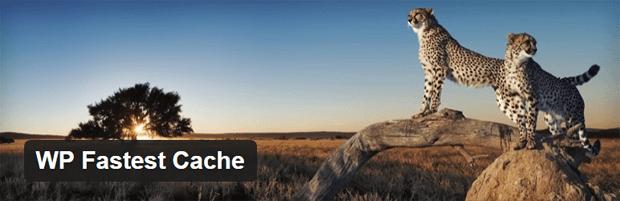 wp fast cache wordpress plugin
