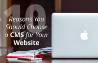 reasons you should choose cms for building website