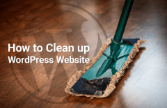 clean up wordpress website