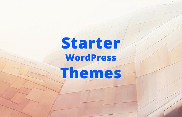 best starter wordpress themes