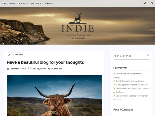 indie free wordpress theme