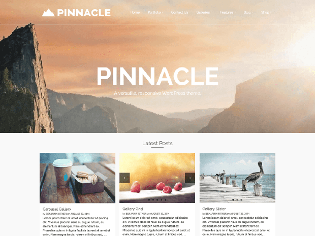 pinnacle free wordpress theme