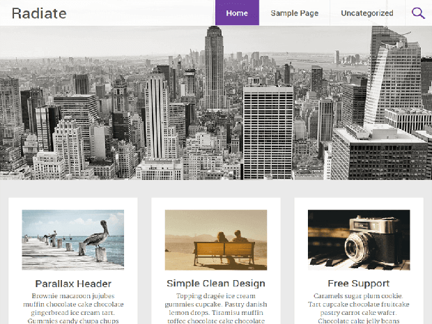 radiate free wordpress theme