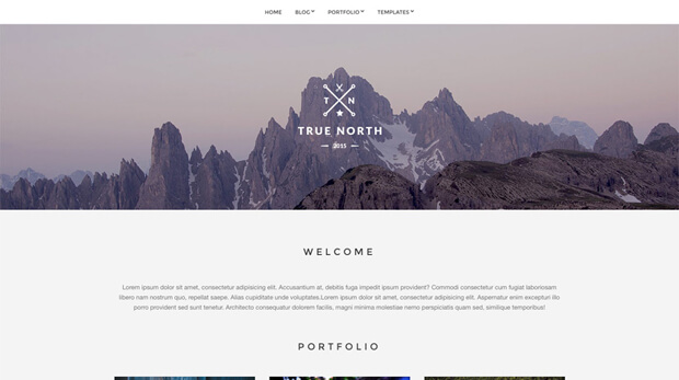 truenorth free wordpress theme
