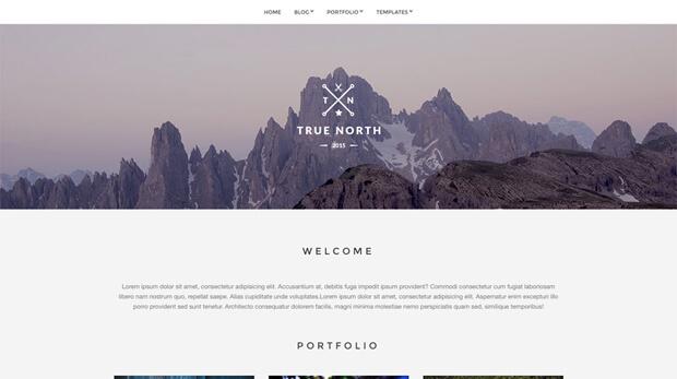 truenorth free wordpress theme
