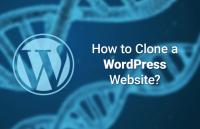clone wordpress website fast