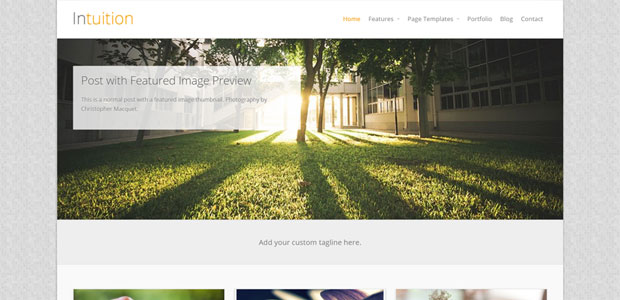 intuition free woocommerce theme