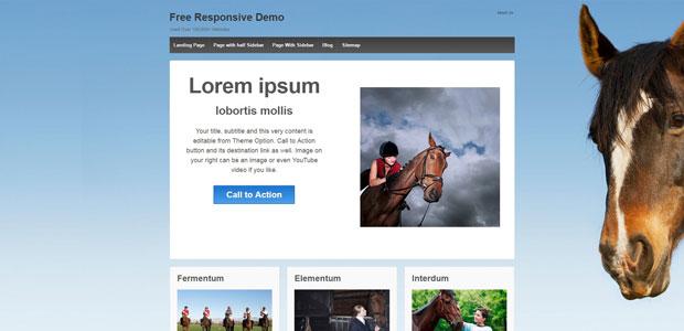 responsive free woocommerce theme