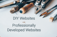 diy websites vs professional websites