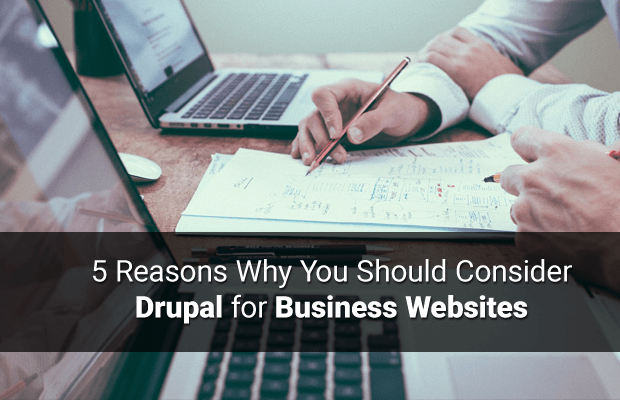 use drupal business websites