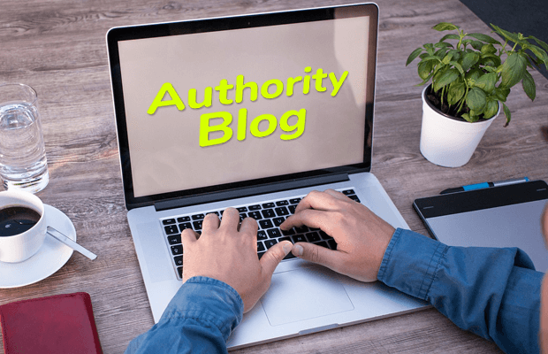 make authority niche blog