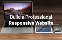 build-professional-responsive-website