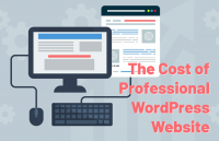 cost-professional-wordpress-website