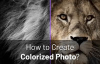 create-colorized-photo