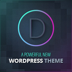 divi - the best wordpress theme
