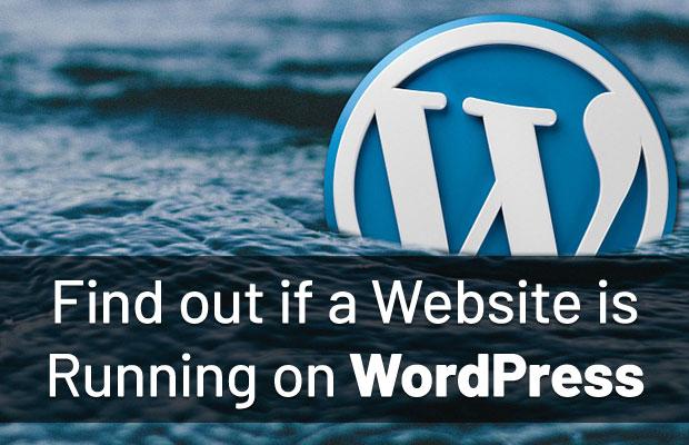 find-website-running-wordpress