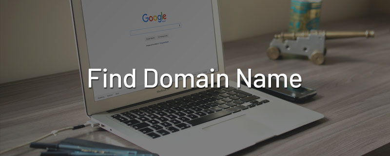 find-domain-name-company-website