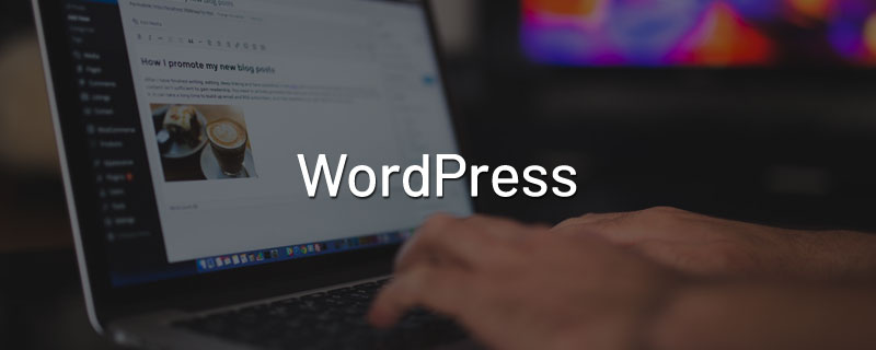 use-wordpress-company-website
